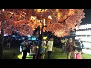 YOKOSO: A Celebration of Japan @ BBCC