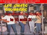 Les Chats Sauvages & Dick Rivers_Tu peins ton visage (1961)(GV)