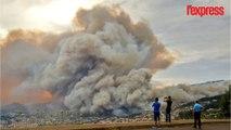 Portugal: 3 morts et 1000 personnes évacuées dans les incendies à Madère