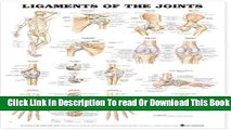 [Popular] Ligaments of the Joints Anatomical Chart Paperback Online