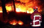 Incendie aux portes de Marseille : images et témoignages au coeur du brasier