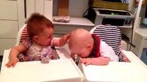Les rires aux éclats de ces petits jumeaux très complices, illumineront votre journée !