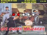 Les Chats Sauvages & Dick Rivers_J'ai pris dans tes yeux (1961)(GV)