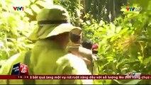 Lương chỉ hơn 2 triệu, một ngày đi 40,50 km vậy động lực nào khiến những người chiến sĩ này vẫn bám trụ với rừng? Phải chăng vì tình yêu với những cánh rừng già?