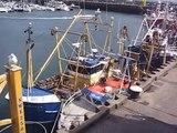 160808 Harbour & Hispaniola Scarborough