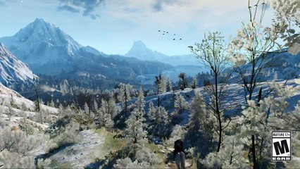 The Witcher 3  Wild Hunt - GAME OF THE YEAR Edition announcement de The Witcher 3 : Wild Hunt