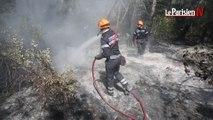 Incendie : avec les marins-pompiers de Marseille sur le terrain