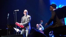 Pink Martini Engien 4 Hang on little tomato