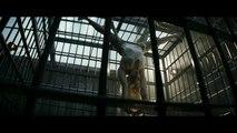 Suicide Squad - VOST (2)