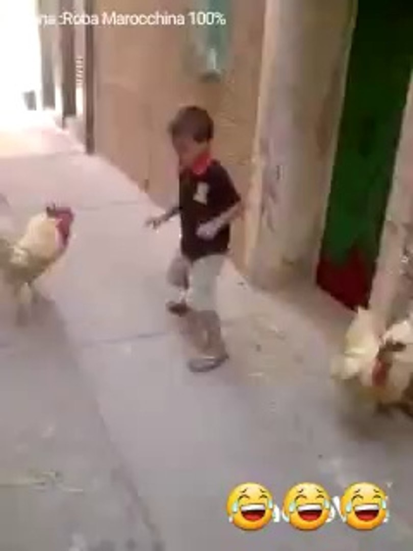 funny kid fight