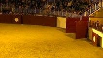 11.08.16 Barcelonne 1e Balade Tauromachique & Equestre   2e Partie  Spectacle Equestre