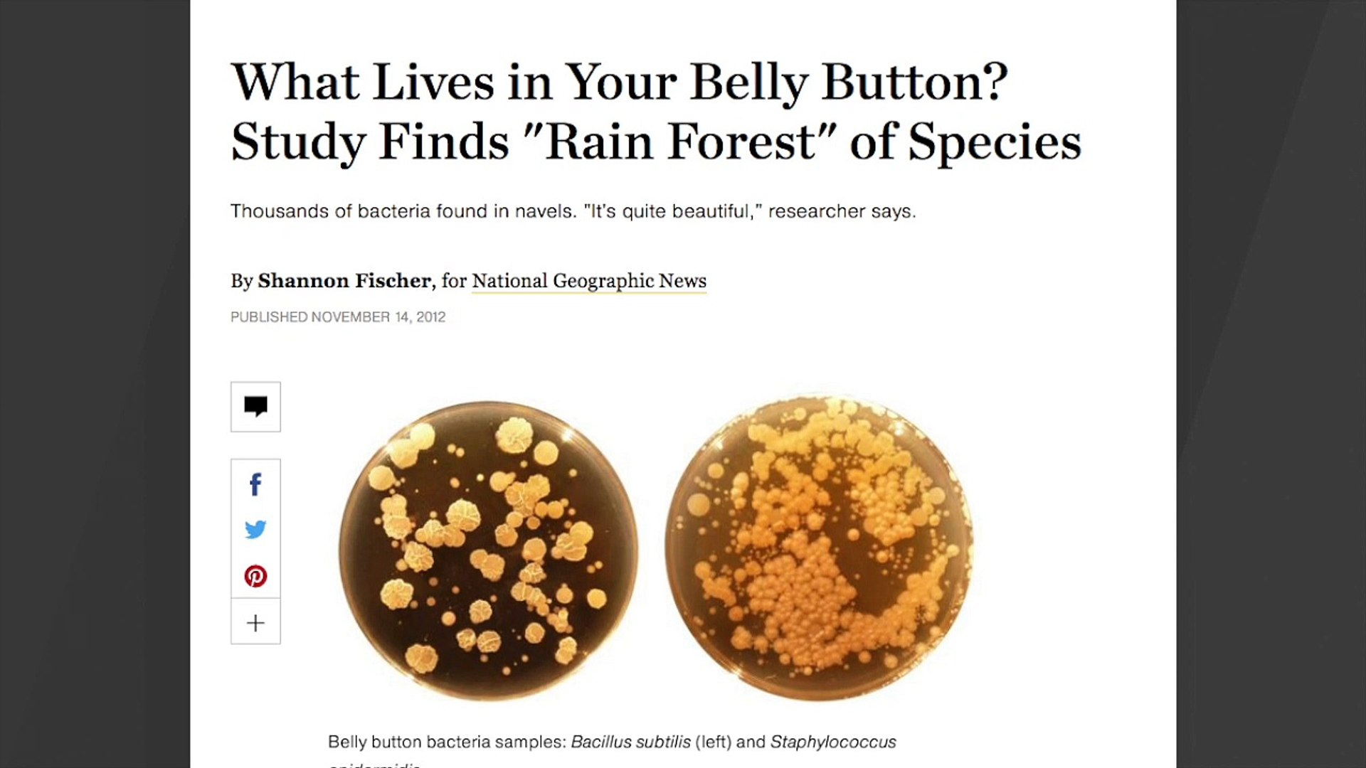 Our Belly Buttons Contain 'Rain Forest' Of Bacteria