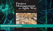 Big Deals  Project Management the Agile Way: Making It Work in the Enterprise  Free Full Read Best