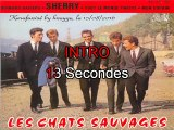 Les Chats Sauvages & Mike Shannon_Derniers baisers (Bobby Vinton_Sealed with a kiss)(1962)