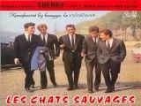 Les Chats Sauvages & Mike Shannon_Mon copain (1962)