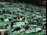 ULTRAS ASSE Magic fans kop nord (anti ol om psg bsn)l