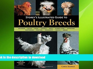 FAVORITE BOOK  Storey s Illustrated Guide to Poultry Breeds: Chickens, Ducks, Geese, Turkeys,