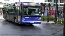 VanHool NewA330 N°116 Fil Bleu
