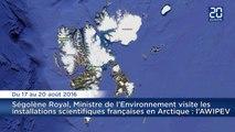 Ségolène Royal visite l'archipel arctique du Svalbard : Les mammifères qu'elle risque de croiser
