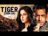 Salman Khan & Katrina Kaif Together Again In Ek Tha Tiger Sequel 'Tiger Zinda Hain'