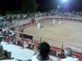 Course de taureaux 2