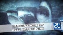 Shark Nanars: Les pires nanars avec des requins