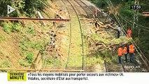 EN DIRECT - Accident de TER près de Montpellier - Le train a percuté un arbre - Plusieurs blessés graves - Le train roul