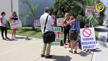 In 60 Seconds - Florida Residents Denounce Planned Release of GMO Mosquitoes