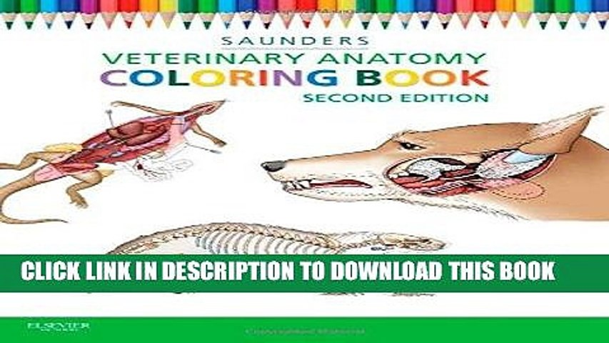 PDF] Veterinary Anatomy Coloring Book, 2e Popular Online - Video Dailymotion
