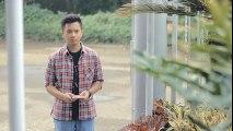 Pamit - Tulus (Bintan, Rahma, Mega, Andri Guitara) cover - YouTube