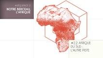 MOOC Les origines de l'Homme, Séquence 2.2. Afrique du Sud : l'autre piste