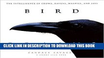 Best Seller Bird Brains: The Intelligence of Crows, Ravens, Magpies, and Jays Free Read