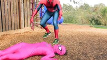 Spiderman Vs Spidergirl - Superhero Battle! w_ Hulk and Joker Superhero Time Adventures Episode MV