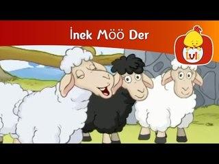 İnek Möö Der - Koyun, Luli TV
