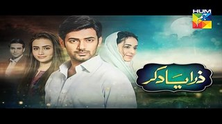 Zara Yaad Kar Episode 25 Promo in HD on Hum Tv in - 23rd August 2016