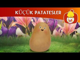 KÜÇÜK PATATESLER - CHIP'İN TEMASI, LULI TV