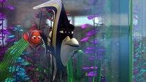 Le monde de Némo, aquarium
