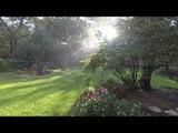 Beautiful Slow Motion Video Shows Rain Falling in Garden