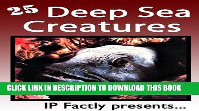Collection Book 25 Deep Sea Creatures. Amazing facts, photos and video links to some of the