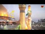 Ya Ali Tera Shukriya | Mir Hussain Mir | Manqabat 2015 | Best Manqabat | Thar Production
