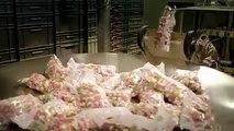 Comment sont fabriqués les bonbons composés de gélatine ? Voici une vidéo qui ne vous mettra pas en appétit !