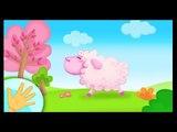 Comptinette des moutons - Petite comptine à gestes pour bébés avec les chiffres - Titounis