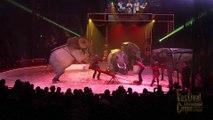 Bande-annonce du 17ème Festival International du Cirque du Val d'Oise