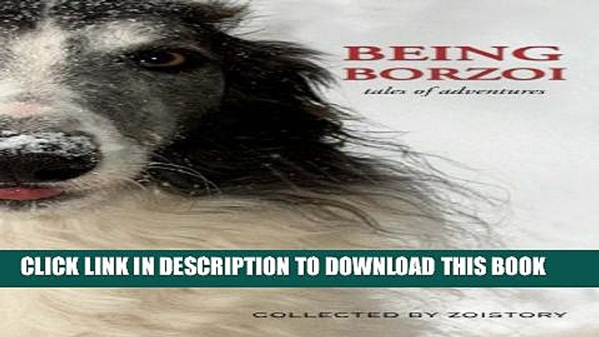 Being Borzoi: tales of adventures