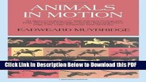 [Read] Animals in Motion (Dover Anatomy for Artists) by Muybridge, Eadweard (2000) Full Online