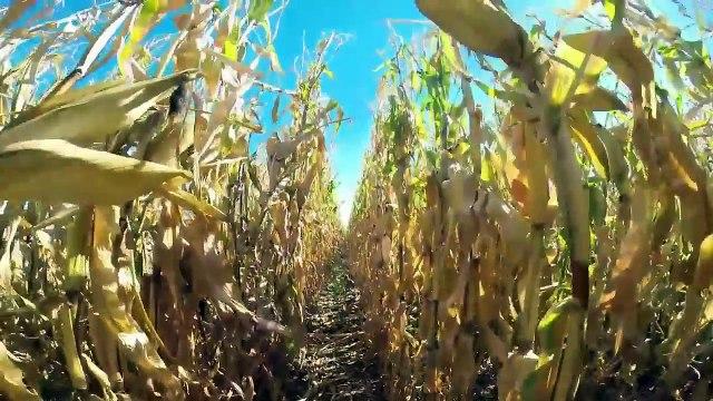 farming technology modern marvels, tractor working on the farm, modern farming technology[1]