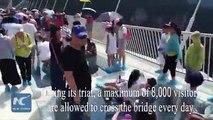 Le pont de verre le plus long du monde est enfin ouvert au public