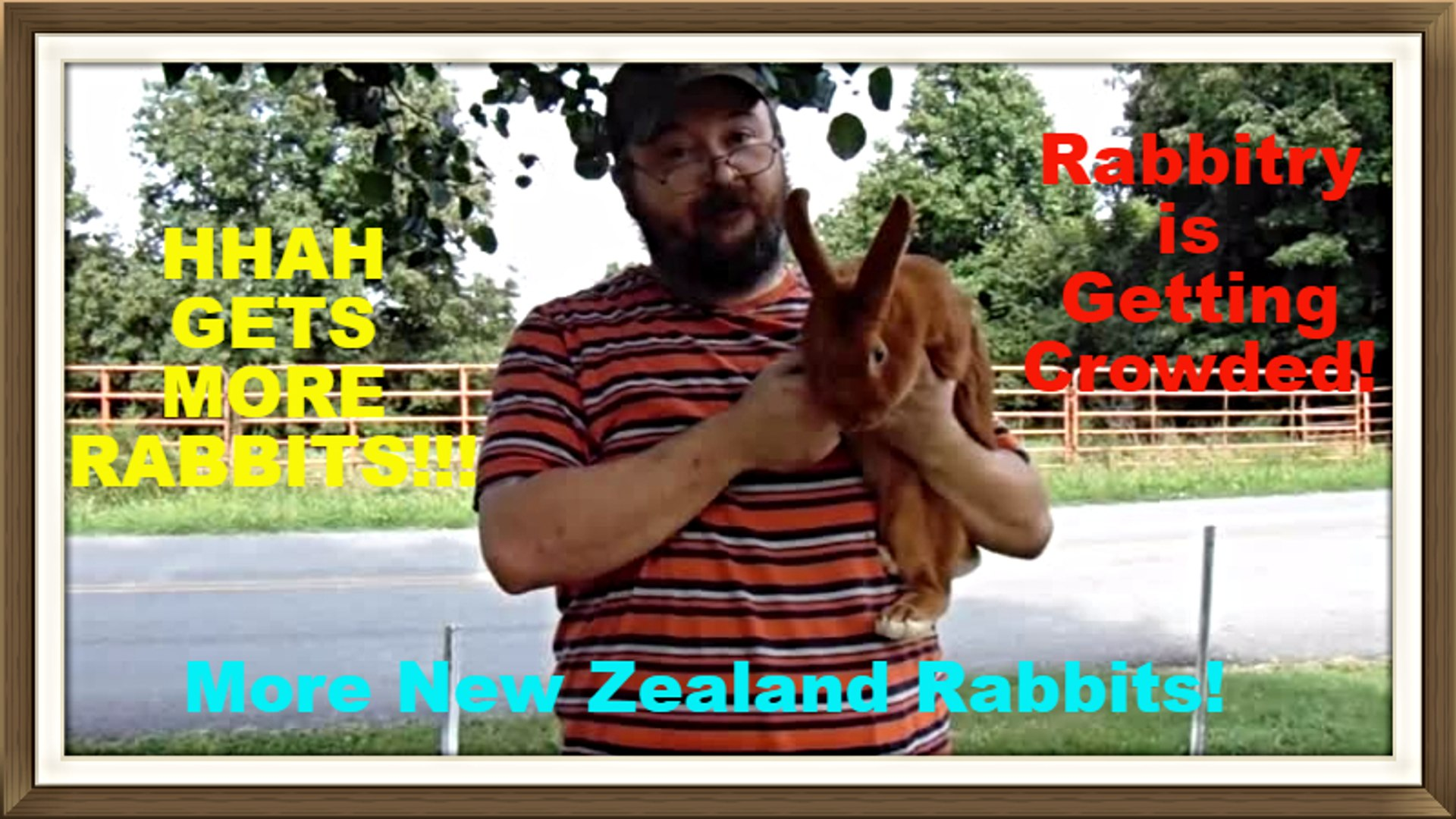 New Zealand Rabbit Additions to the Rabbitry Part 2 of 2.mp4