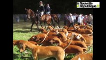 VIDEO. Tours : Montpoupon célèbre la chasse et la nature