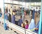 geo adil peshawar afghan repatriation and unhcr
